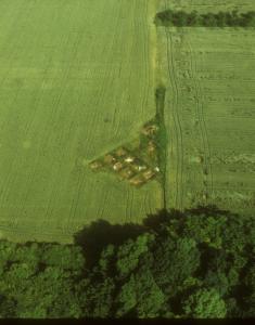 Vue aérienne de la fouille des principia en 1970